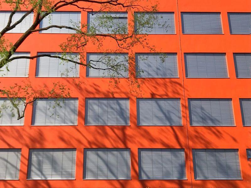 Osłony okienne